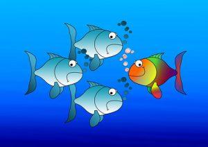 Fische Einzigartigkeit Wer bin ich