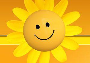 Rhetorik Selbstpräsentation Sonnenblume