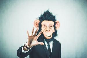 Besprechungs-Bingo für Meetings, Sitzungen und Tagungen, monkey-2710667_960_720-300x200