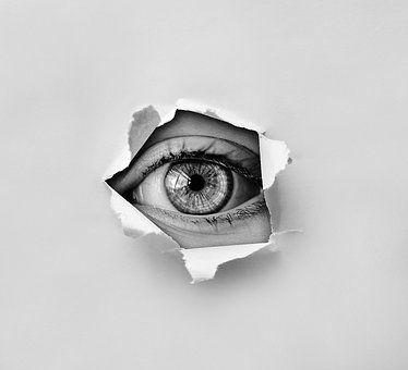 das Auge isst mit